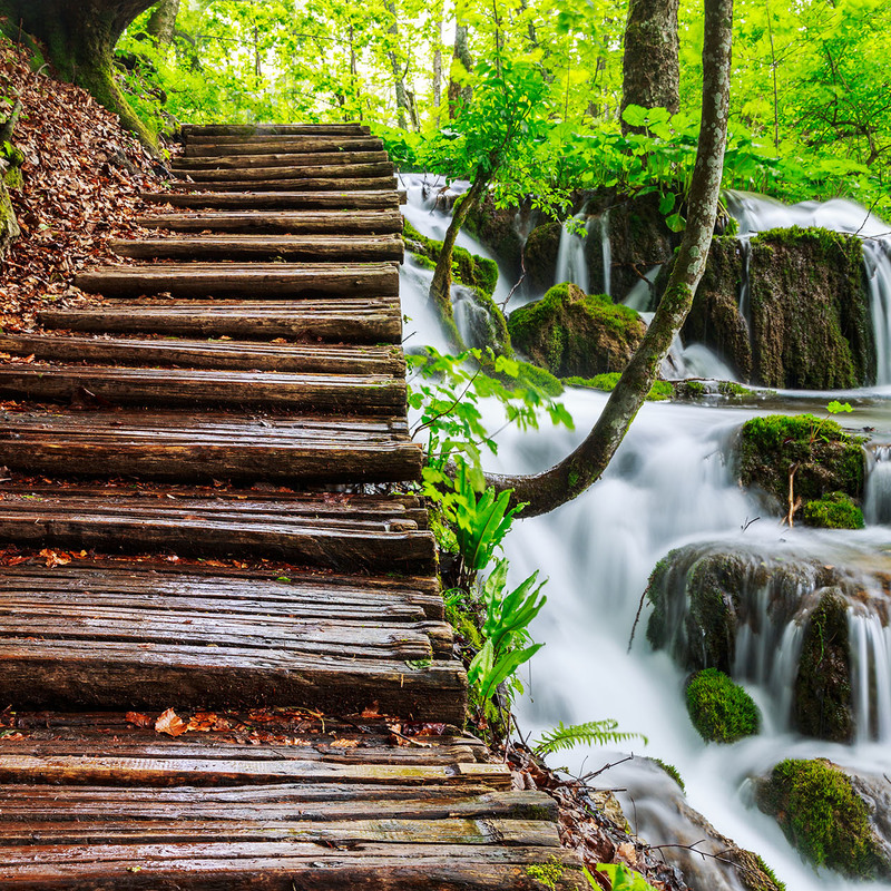 Waterfall with steps in a wood